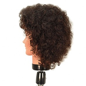 Celebrity Erica Mannequin Head 100% Human Hair 18
