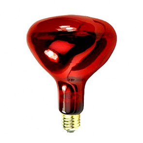 Pibbs Ruby Bulbs 250 Watts La250